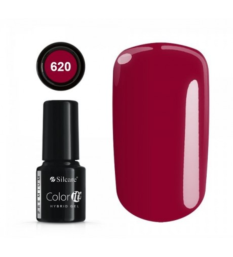 NEW COLOR IT PREMIUM 6g N°620