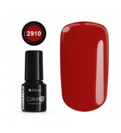 NEW COLOR IT PREMIUM 6g N°2910