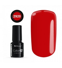 NEW COLOR IT PREMIUM 6g N°2920