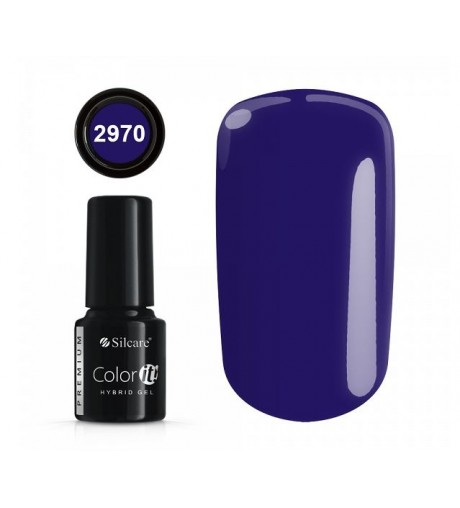 NEW COLOR IT PREMIUM 6g N°2970