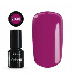 NEW COLOR IT PREMIUM 6g N°2930