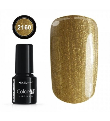 NEW COLOR IT PREMIUM 6g GOLD N°2160