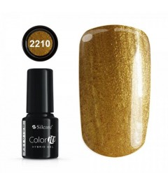 NEW COLOR IT PREMIUM 6g GOLD N°2210