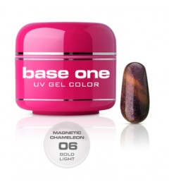 NEW Gel UV BASE ONE MAGNETIC CAMALEONT 06