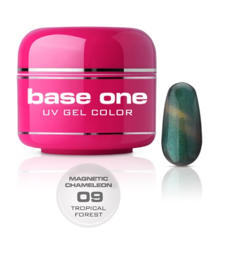 NEW Gel UV BASE ONE MAGNETIC CAMALEONT 09