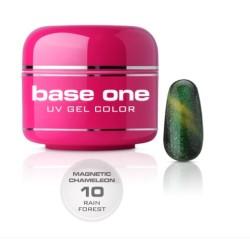 NEW Gel UV BASE ONE MAGNETIC CAMALEONT 10