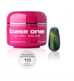 NEW Gel UV BASE ONE MAGNETIC CAMALEONT 10