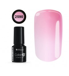 NEW COLOR IT PREMIUM THERMO N°2590
